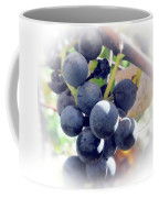 Grapes On The Vine Coffee Mug by Kathleen Struckle