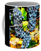 Grapes On The Vine Coffee Mug by Kay Gilley