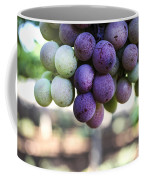 Grapes On Vine Coffee Mug
