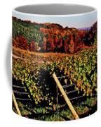 Grapevines In Vineyard, Traverse City Coffee Mug
