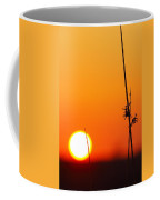Grass At Sunset 2am-13695 Coffee Mug