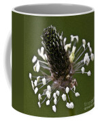 Grass Bloom Coffee Mug