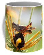 Grasshopper Antena Up Coffee Mug