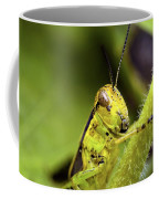Grasshopper Macro 9402 Coffee Mug