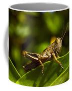 Grasshopper Macro Coffee Mug