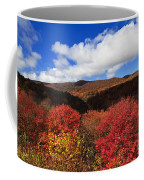 Graveyard Fields In The Mountains Coffee Mug