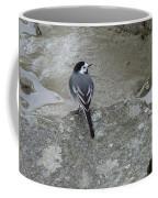 Gray Bird Coffee Mug