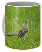 Gray-eyed Catbird II Coffee Mug