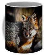 Gray Fox Coffee Mug