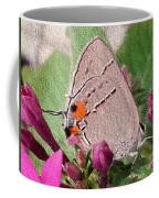Gray Hairstreak Butterfly Coffee Mug