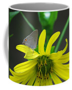 Gray Hairstreak Butterfly Coffee Mug