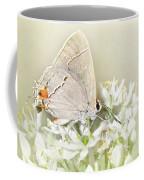 Gray Hairstreak IIi Coffee Mug
