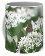 Gray Hairstreak On White Blossoms Coffee Mug
