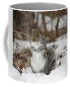 Gray Squirrel In Snow Coffee Mug