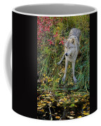 Gray Wolf Drinking Coffee Mug