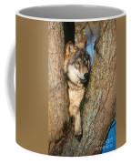 Gray Wolf In Tree Canis Lupus Coffee Mug