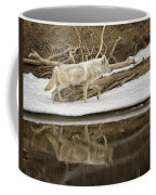 Gray Wolf Reflection Coffee Mug