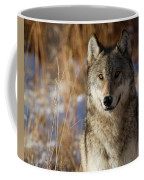 Gray Yearling Coffee Mug