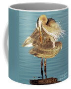 Great Blue Heron Ardea Herodias Preening Coffee Mug