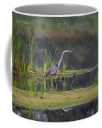 Great Blue Heron At Down East Maine Wetland Coffee Mug