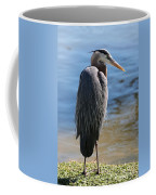Great Blue Heron By Pond Coffee Mug