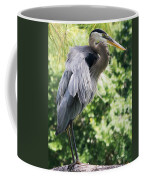 Great Blue Heron IIi Coffee Mug