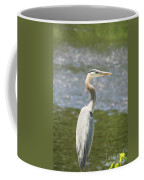 Great Blue Heron In Light  Coffee Mug