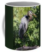 Great Blue Heron Vii Coffee Mug