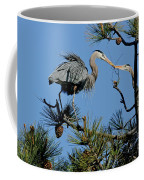 Great Blue Heron With Nest Material Coffee Mug