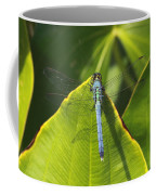 Great Blue Skimmer Coffee Mug