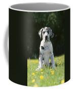 Great Dane Puppy Coffee Mug