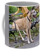 Great Dane Sitting On Park Bench Coffee Mug