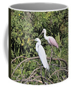 Great Egret And Roseate Spoonbill Coffee Mug