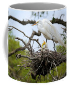 Great Egret Chicks - Sibling Rivalry Coffee Mug by Carol Groenen