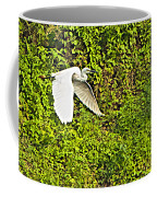 Great Egret Flying Over Rapti River In Chitwan Np-nepal Coffee Mug