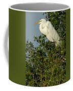 Great Egret In A Tree Coffee Mug
