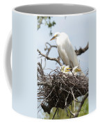 Great Egret Nest With Chicks And Mama Coffee Mug