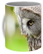 Great Gray Owl Close Up Coffee Mug