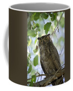 Great Horned Owl On A Branch  Coffee Mug