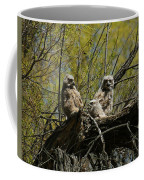 Great Horned Owlets 1 Coffee Mug