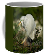 Great Egret Takes A Stance Coffee Mug