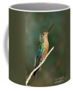 Great Sapphirewing Coffee Mug
