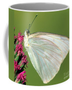 Great Southern White Butterfly Coffee Mug