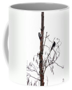 Great Spotted Woodpecker And A Blackbird. Dude What Are You Doing Coffee Mug
