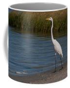 Great White 184 Coffee Mug