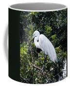 Great White Egret Building A Nest Viii Coffee Mug