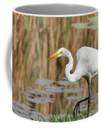 Great White Egret By The River Coffee Mug by Sabrina L Ryan