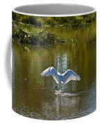 Great White Egret In Sunlight Coffee Mug
