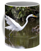 Great White Egret Looking For Fish 1 Coffee Mug