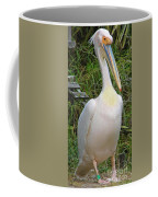 Great White Pelican Coffee Mug